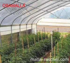 Generalidades de Malla Sombra para uso agrícola